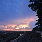 We LOVE the Andaman Islands (Video)