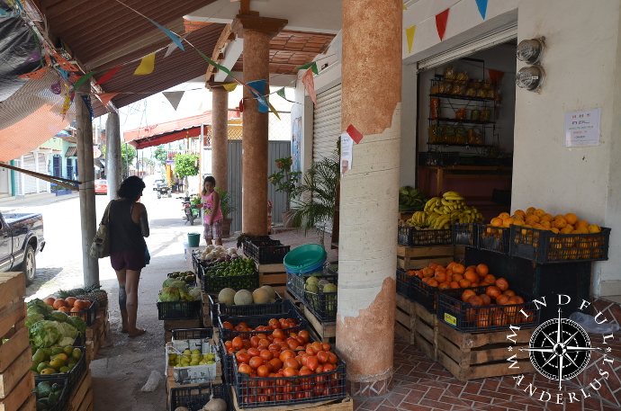 Grocery shopping in Lo de Marcos