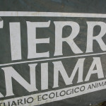 Tierra De Animales Sanctuary, Cancun, Mexico